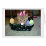 Easter Orange Tabby Kitty Cat Greeting Card