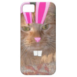 Easter Orange Tabby Kitty Cat iPhone 5 Covers