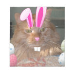 Easter Orange Tabby Kitty Cat Memo Note Pad