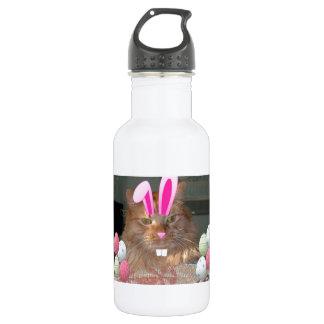 Easter Orange Tabby Kitty Cat Stainless Steel Water Bottle