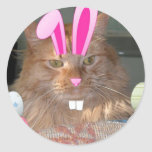 Easter Orange Tabby Kitty Cat Stickers