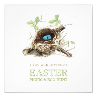 Easter Picnic Egg Hunt Party invitation