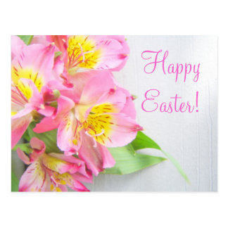 Easter Pink Lily Postcard