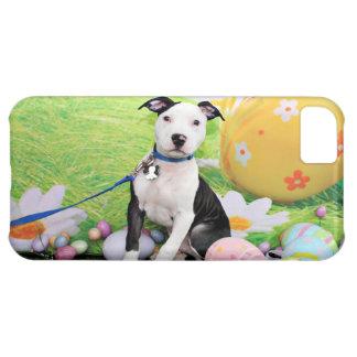 Easter - Pitbull - Gunner iPhone 5C Case