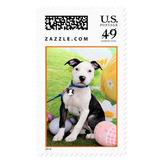 Easter - Pitbull  - Gunner Postage Stamp