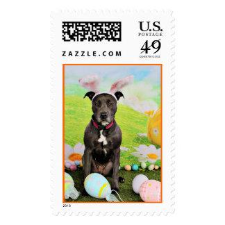 Easter - Pitbull  - Gunner Stamp