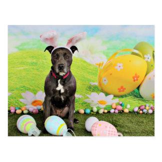 Easter - Pitbull  - Puddin Head Postcard
