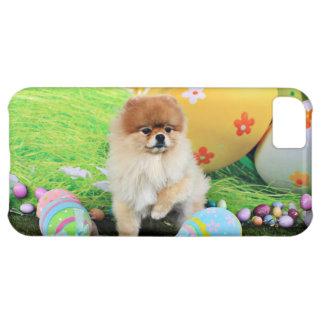 Easter - Pomeranian - Dexter iPhone 5C Cover
