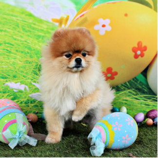 Easter - Pomeranian - Dexter Acrylic Cut Outs