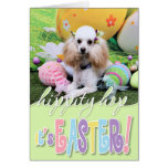 Easter - Poodle - Dolly Greeting Card