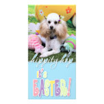 Easter - Poodle - Dolly Photo Cards