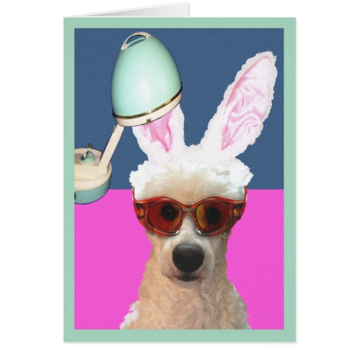 Easter Poodle Glamming It Up Greeting Cards