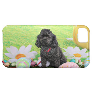 Easter - Poodle - Junior iPhone 5C Cases