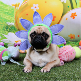 Easter - Pug - Louie Cut Outs