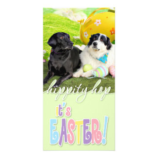 Easter - Pyrenees X - Tristyn CiCi - Labrador Photo Cards