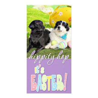 Easter - Pyrenees X - Tristyn CiCi - Labrador Photo Greeting Card