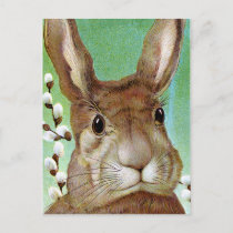 Easter Rabbit Holiday Postcard