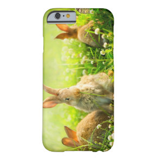 Easter Rabbits Barely There iPhone 6 Case