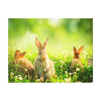 Easter Rabbits Canvas Prints