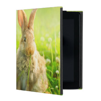 Easter Rabbits iPad Cases