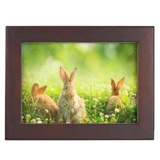 Easter Rabbits Memory Box