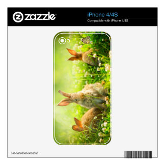 Easter Rabbits iPhone 4 Decal