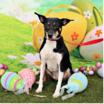Easter - Rat Terrier - Georgia Cut Out
