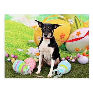 Easter - Rat Terrier - Georgia Postcard