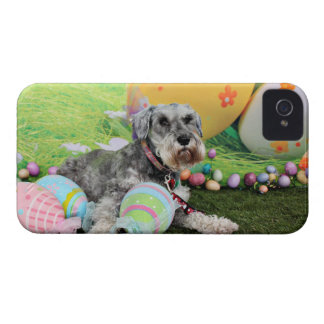 Easter - Schnauzer - Fergie iPhone 4 Covers