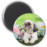 Easter - Shih Tzu - Sophie 2 Inch Round Magnet