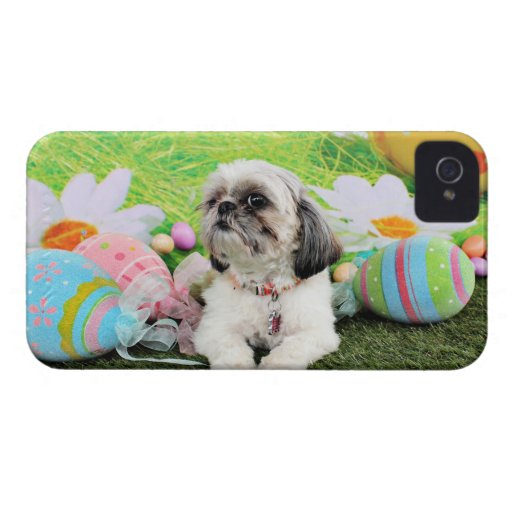 Easter - Shih Tzu - Sophie iPhone 4 Covers