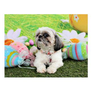Easter - Shih Tzu - Sophie Postcard