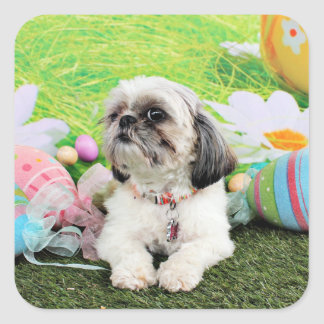 Easter - Shih Tzu - Sophie Square Sticker