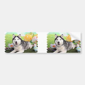 Easter - Siberian Husky - Luka Car Bumper Sticker