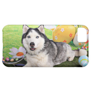 Easter - Siberian Husky - Luka iPhone 5C Cover