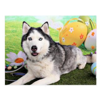 Easter - Siberian Husky - Luka Postcard