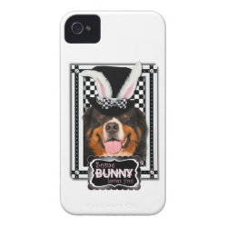 Case-Mate iPhone 4 Barely There Universal Case with Bernese Mountain Dog Phone Cases design