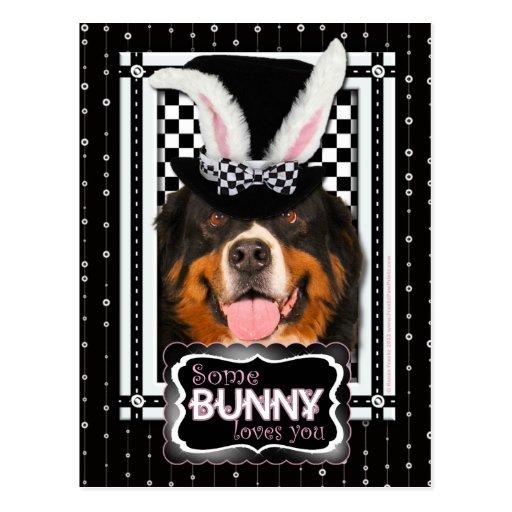 Easter - Some Bunny Loves You - Bernie Post Cards