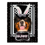 Easter - Some Bunny Loves You - Bernie Postcard