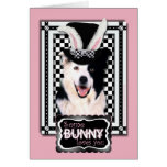 Easter - Some Bunny Loves You - Border Collie Greeting Card