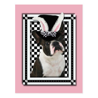 Easter - Some Bunny Loves You - Boston Terrier Postcard