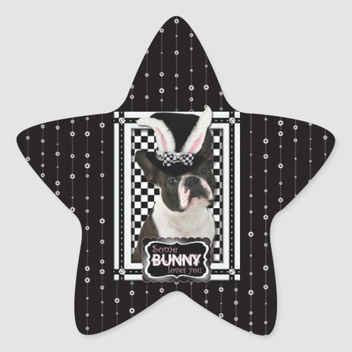 Easter - Some Bunny Loves You - Boston Terrier Stickers