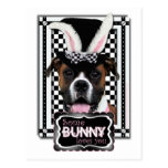 Easter - Some Bunny Loves You - Boxer Postcard