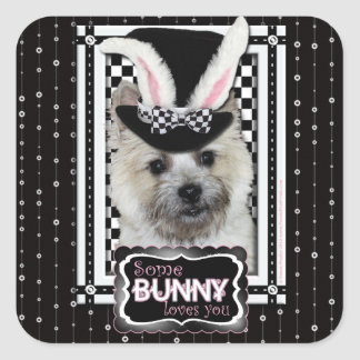 Easter - Some Bunny Loves You - Cairn Terrier Square Stickers