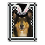 Easter - Some Bunny Loves You - Collie Caroline Cut Out