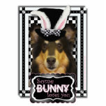 Easter - Some Bunny Loves You - Collie Caroline Acrylic Cut Outs