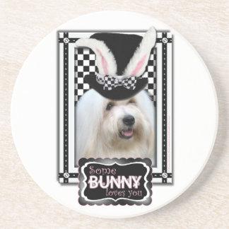Easter - Some Bunny Loves You - Coton de Tulear Beverage Coaster