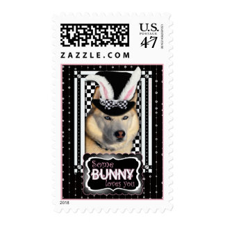 Easter - Some Bunny Loves You - Husky Postage