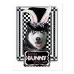 Easter - Some Bunny Loves You - Husky Postcard