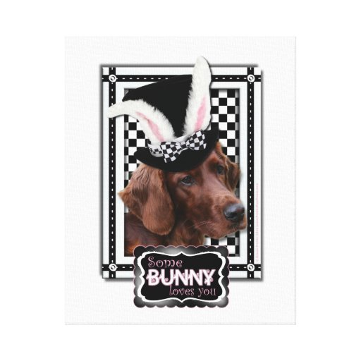 Easter - Some Bunny Loves You - Irish Setter Stretched Canvas Prints